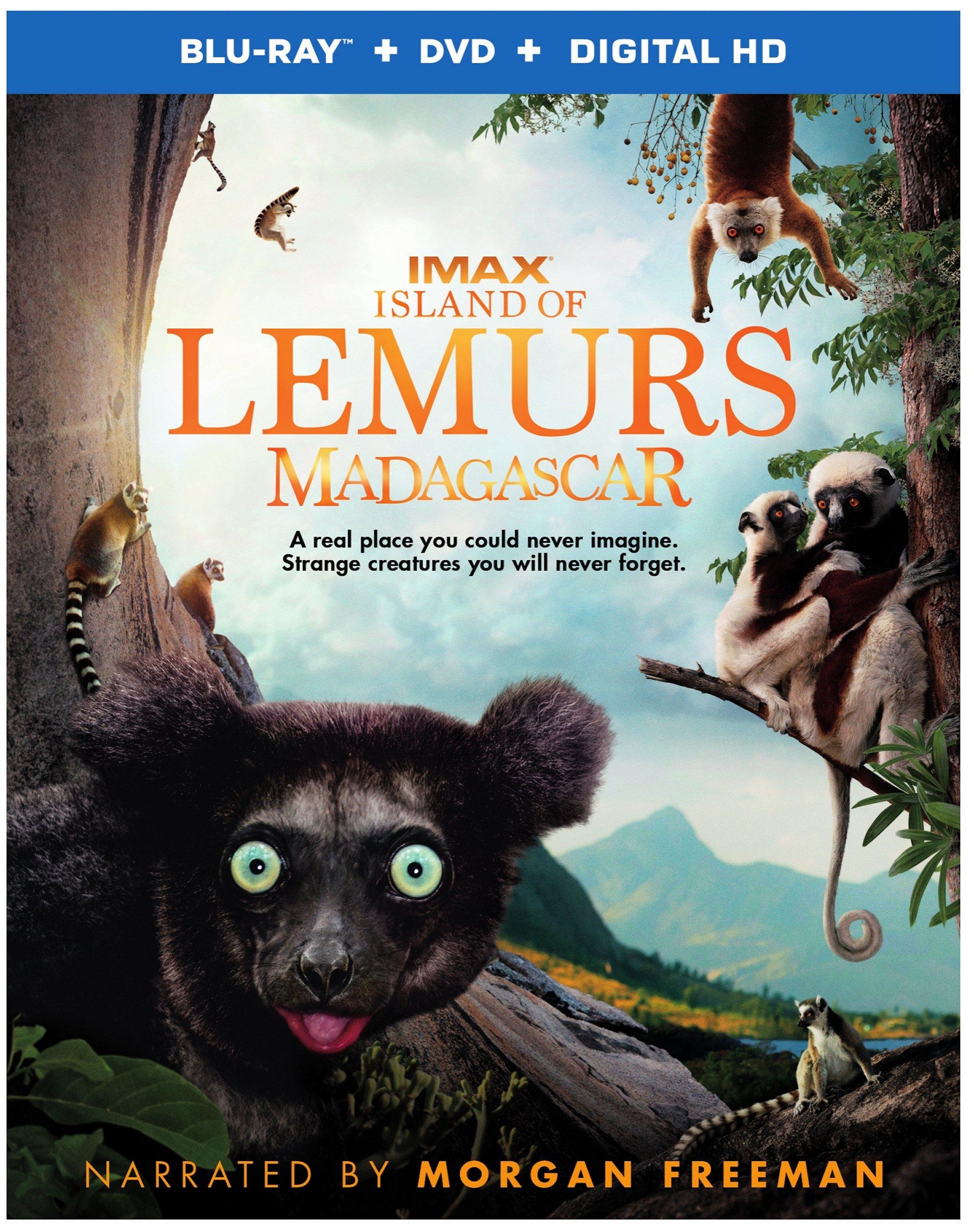 Island of Lemurs: Madagascar Blu-ray Review