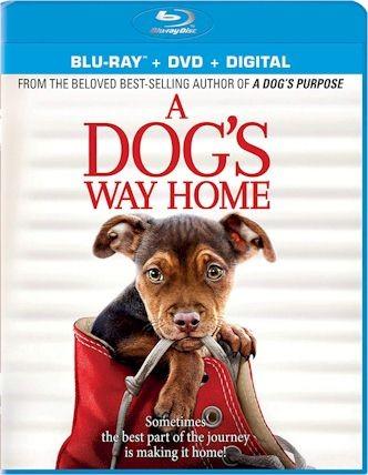 A Dogs Way Home (Blu-ray + DVD + Digital HD)