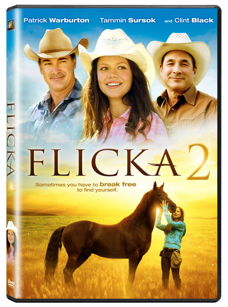 Locandina Flicka 2 – Amici per sempre  streaming film