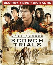 Maze Runner The Scorch Trials (Blu-ray + DVD + Digital HD)
